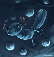 Wooper by Susiron