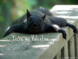 you're my Valentine, you! by Lou-in-Canada