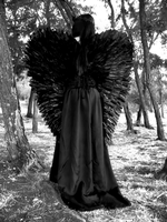 Dark Angel by TheGothica