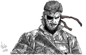 Big Boss by Vins22