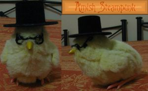 Amish Steampunk by darkbhudda