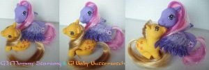 MLP My little Pony Customs Starsong + Butterscotch by BerryMouse