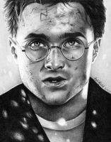 Harry Potter by phoenix132