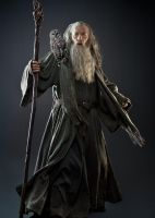 Gandalf the Grey and His Daemon by LJ-Todd