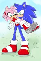 ::first attempt at digital coloring:: SONAMY by DuckLeader