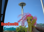 Fluttershy at the Space Needle by TagTamerAJ