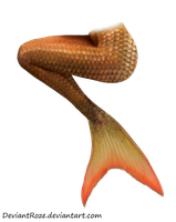 Mermaid Tail 12 (Orange) by DeviantRoze