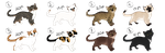 Kitten adoptables for points :TAKEN: by Kultapossu