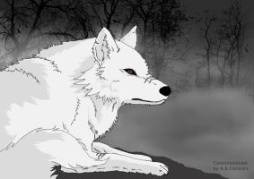 request: wolf - Fray by Separate-cell