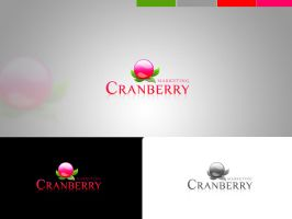 CRANBERRY CONCEPT1 by 11thagency