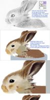 Morning Bunny Step-by-Step by bnolin