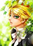 Finnian In The Garden by ThatchyZasi