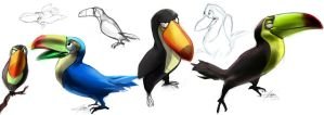 tucan sketches by AndreaBaratelli