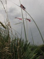 All Flags Flying by Rikkanna