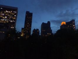 NYC from Central Park by Katemoe