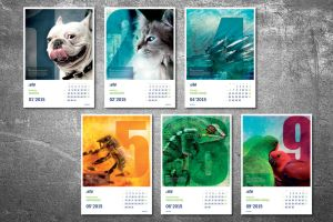 My job: Ista calendar by niziolek