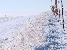 snowy fence 18 by fotophi