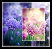 Spring Chives by SunStar1111