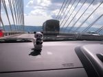 Panda day out to the bridge by liyinalways