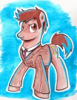 Doctor Whooves Number Ten by MilesofCrochet