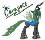 MLP - Carapace by FunkyBacon