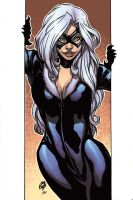 Black Cat by Campos QuickPaint by Ross-A-Campbell