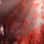 Light Over Us by ildiko-neer