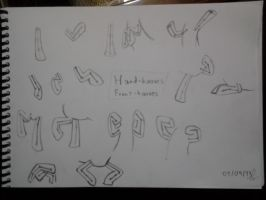 Front legs / hooves practice by zafhir