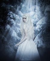 The Ice Maiden by ShcheglinaT