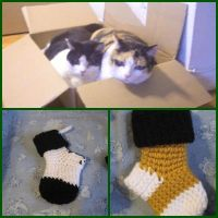 Sock match to cat pattern by giraffesonparades