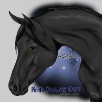 VHR- Black Stallion by Kholran
