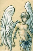 winged fanservice by sw