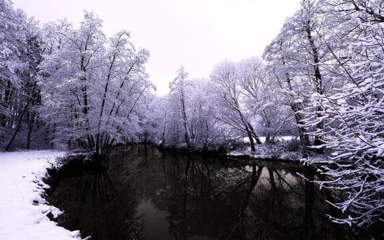 The Cold Days by myINQI
