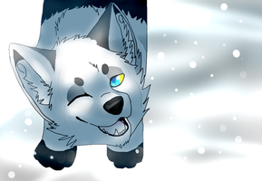 Winter by caifers