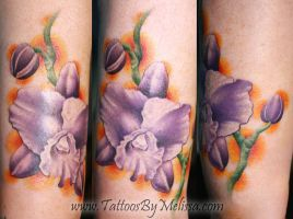 Purple Orchids by Melissa-Capo