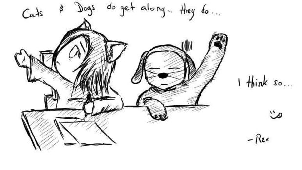 Cats and Dogs do get along.. by Mr-Pomo