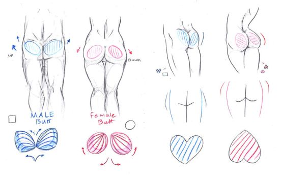 Butt Tutorial by ImoonArt
