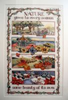 Four Season Cross Stitch by BECKS80