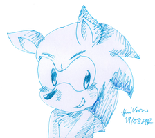 Sonic by Hollsterweelskitty