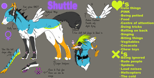 Shuttle Fursona Ref (read description!!!) by GhostBA1T