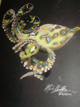 Blue Ringed Octopus by MichelleZombie