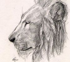 lion contemplation by therealarien