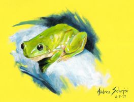 Frog - oil by AndreaSchepisi