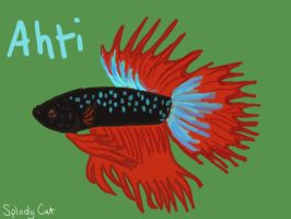 Betta Fish: Ahti by myexplodingcat