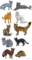 Warrior Cats by meremyth