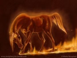 Fire horse by Mospineq