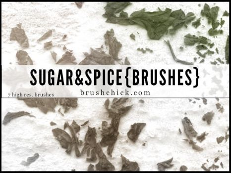 Sugar and Spice Brushes by brushchick
