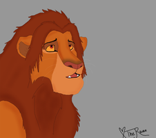 Simba Colour Test by Freakinblack
