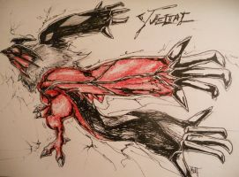 Yveltal - Pen and pencil by HarmoniousReprise