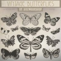 Butterfly Clip Art Clipart Vintage Butterfly by DigiWorkshopPixels